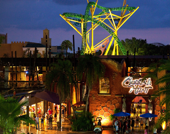 Cheetah Hunt roller coaster at Busch Gardens