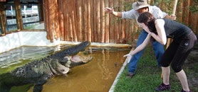 Gatorland Orlando Trainer of the Day