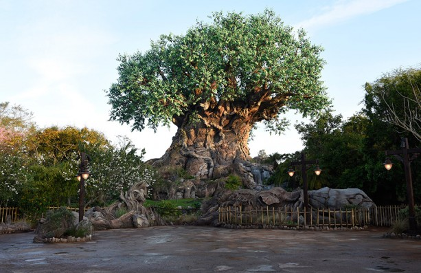 Attraction Spotlight Disney S Animal Kingdom Is The Newest Of Disney S Orlando Theme Parks Al S Blog